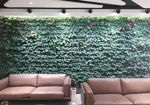 大型绿植墙