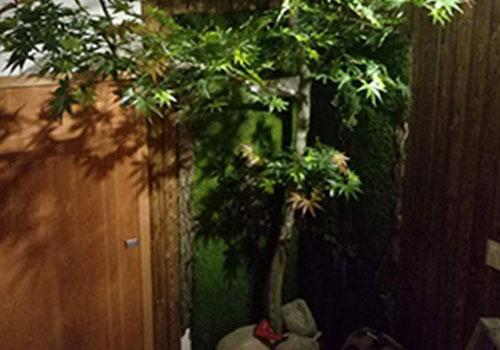 饭店假树的制作工艺及优势