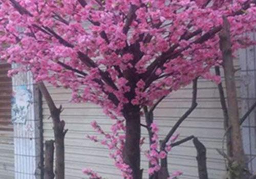 西安仿真樱花树