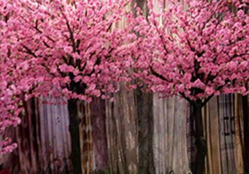 西安仿真桃花树