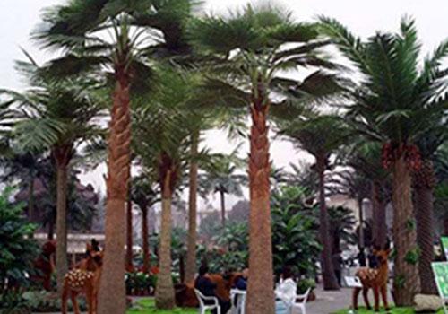 西安仿真棕榈树厂家