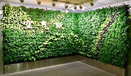 西安垂直绿植墙