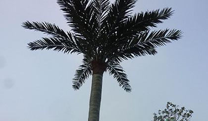 西安仿真树:仿真树景观,不凋零的艺术