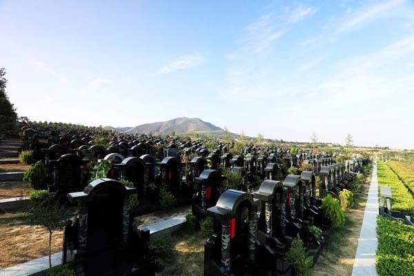 怎样选择公墓
