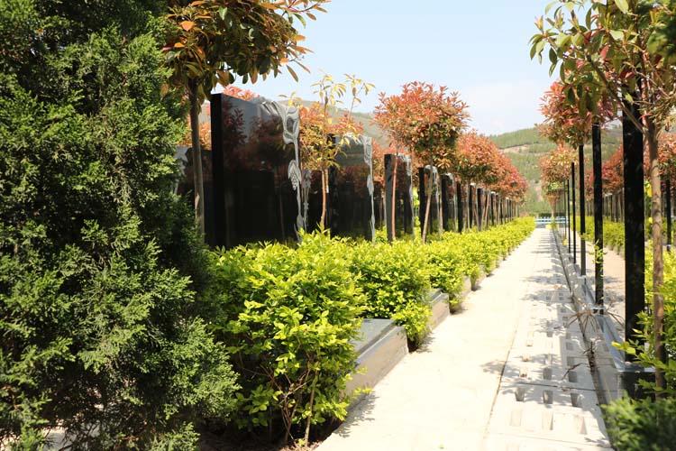 西安墓地风水遵循的基本原则