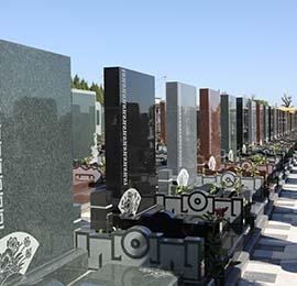 墓地的幾種類型及特點