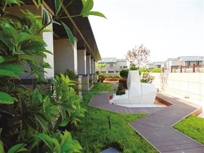 怎么做屋顶绿化