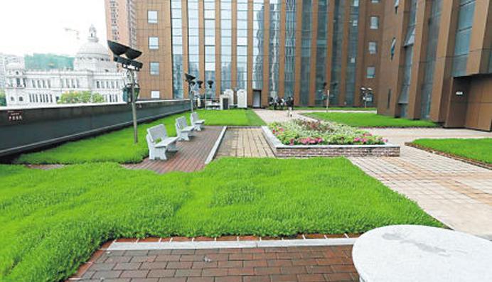 為什么政府鼓勵實施屋頂綠化?
