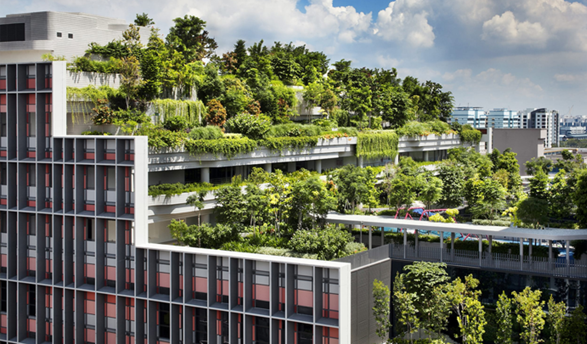 屋頂花園設計與施工應注意什么?