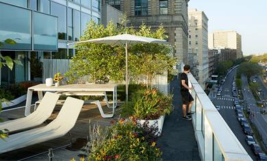专业屋顶花园设计