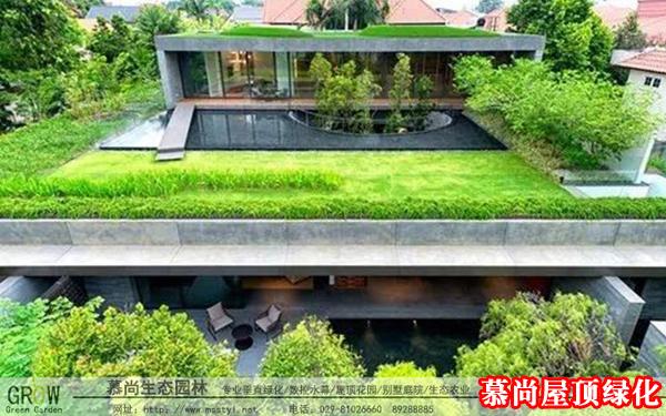 屋頂綠化養護