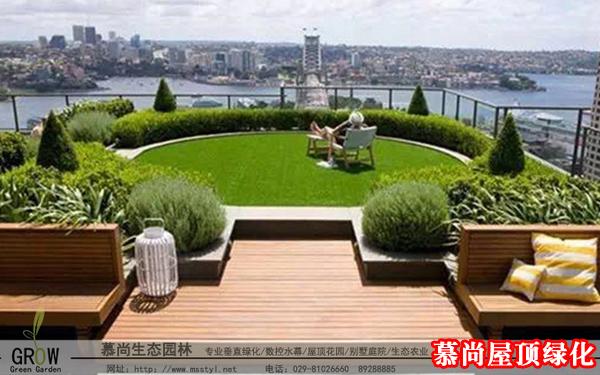 屋顶绿化用的佛甲草抗风吗?