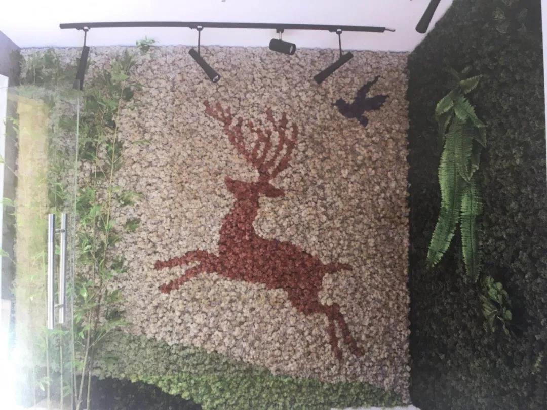 西安植物墙安装