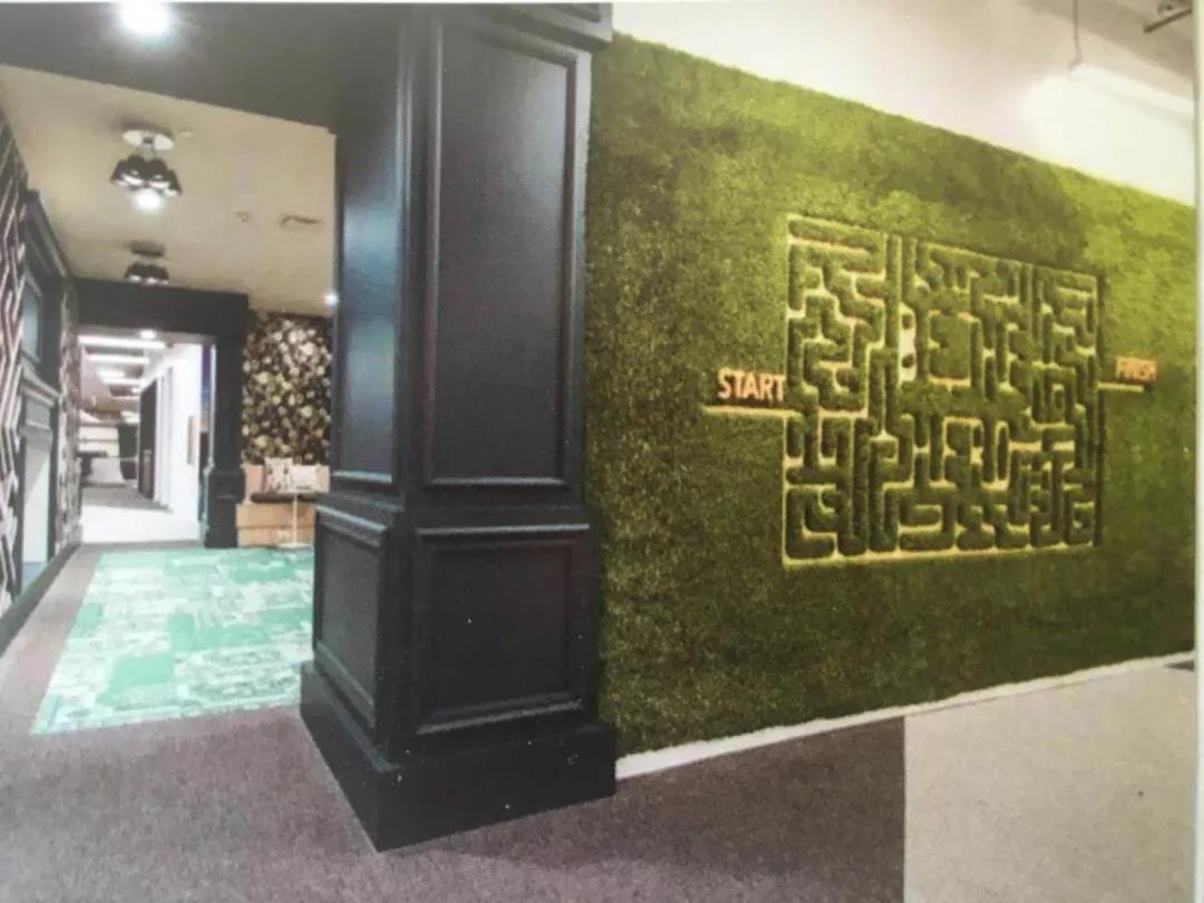 西安苔藓植物墙设计
