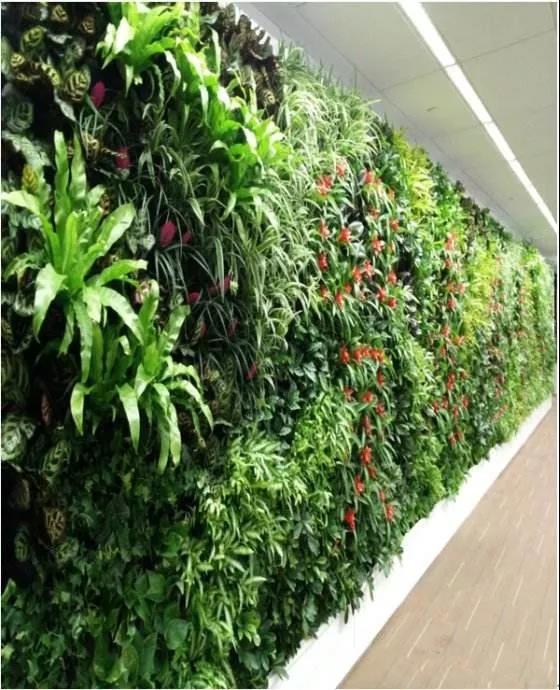 西安室内垂直绿化