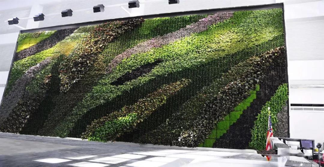 西安立体绿化植物墙