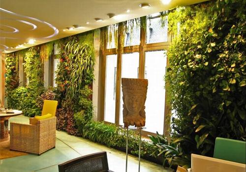 酒店会所室内植物墙