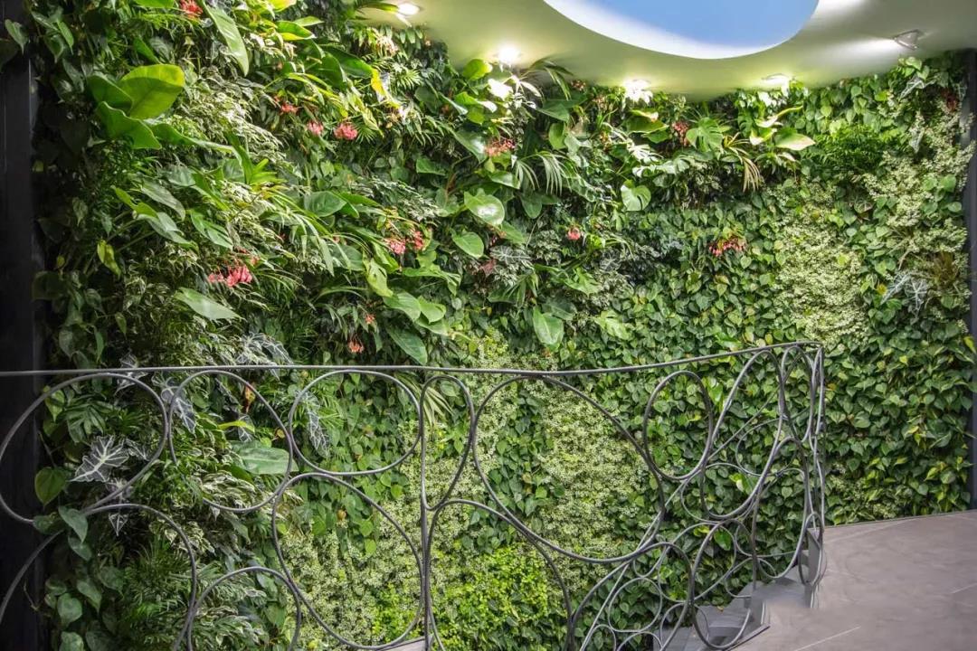 西安仿真植物墙设计