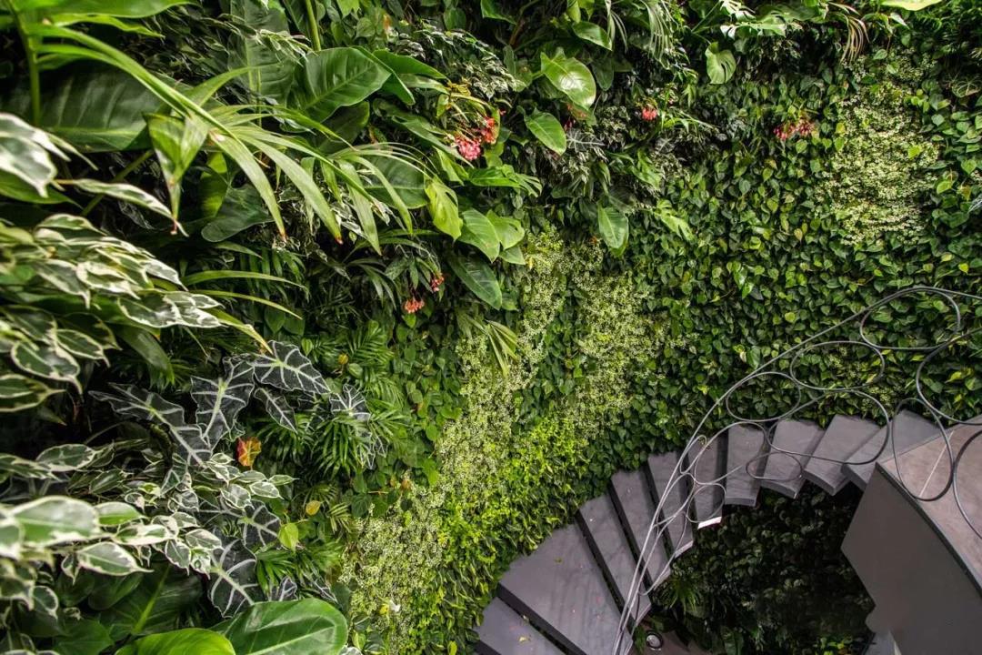西安建筑垂直绿化