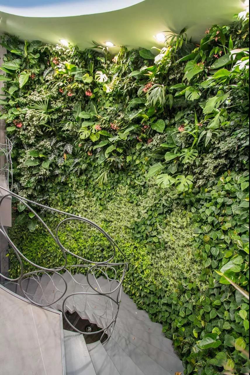 西安植物墙设计