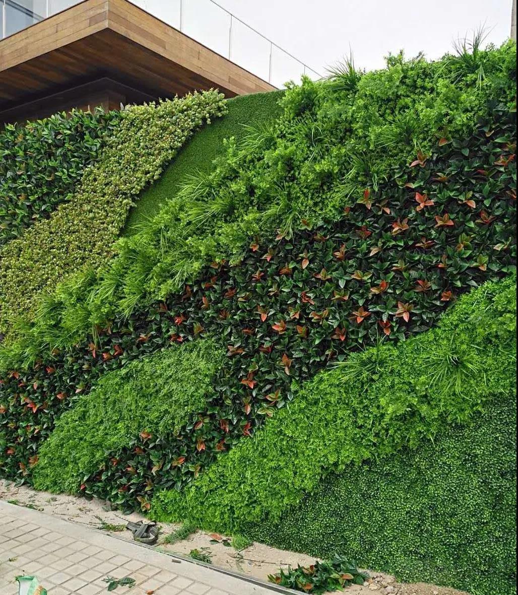 西安外墙植物墙安装