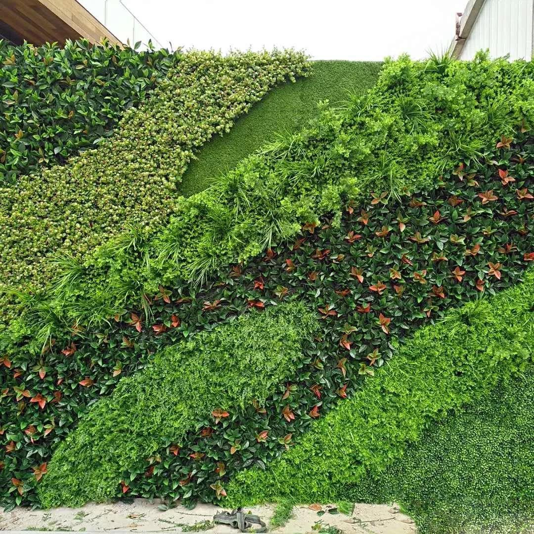 西安名人植物墙设计