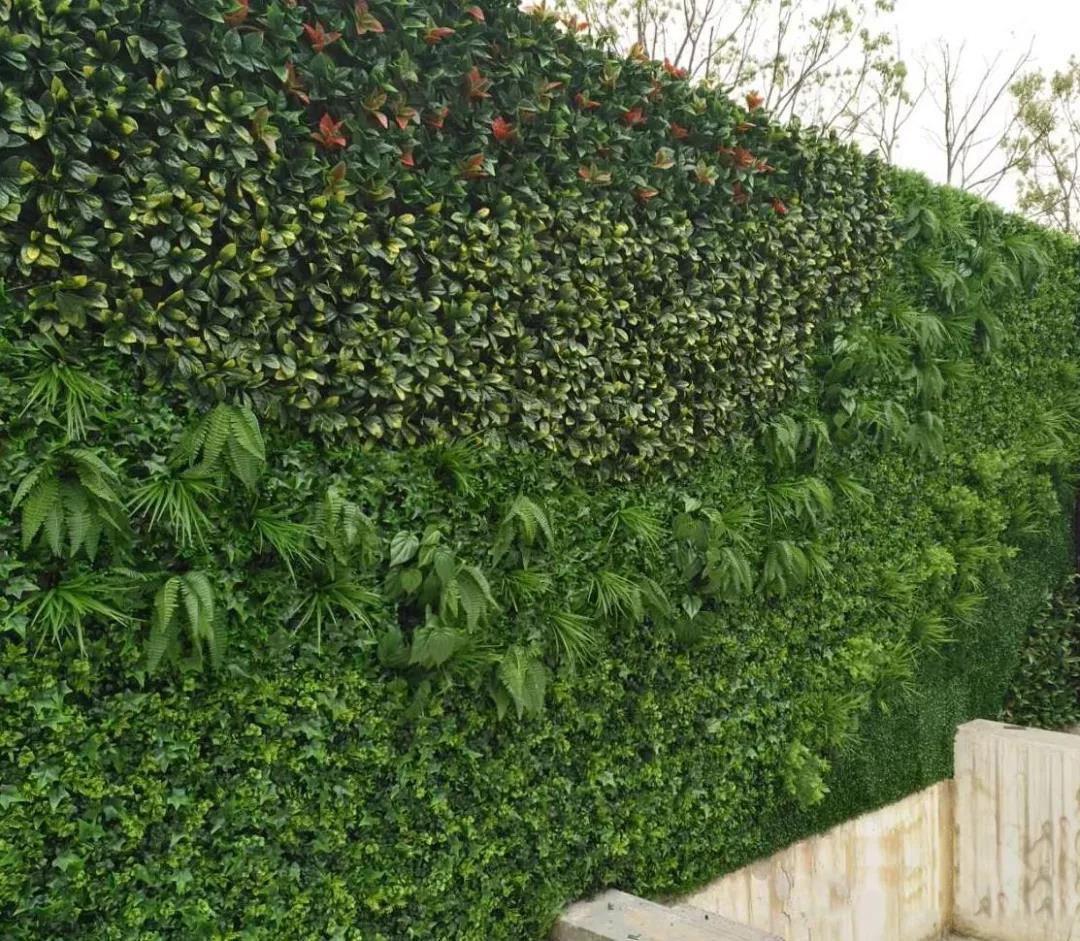 西安环保仿真植物墙