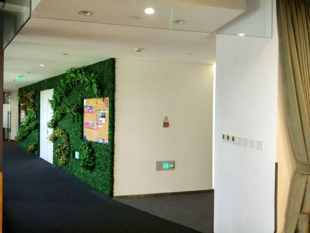 西安植物墙安装公司