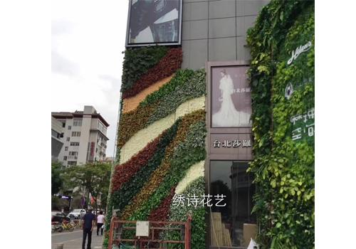 商场外墙仿真植物墙