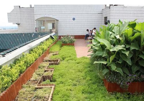 医院屋顶花园