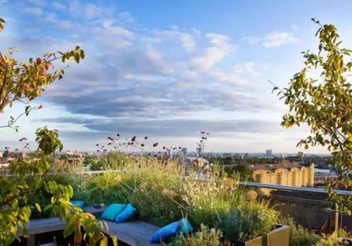 私家屋顶花园