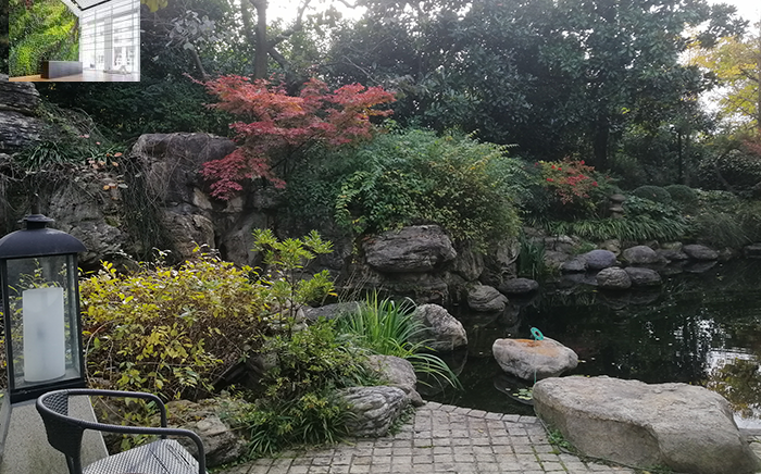 庭院景观设计绿色植物选择很重要