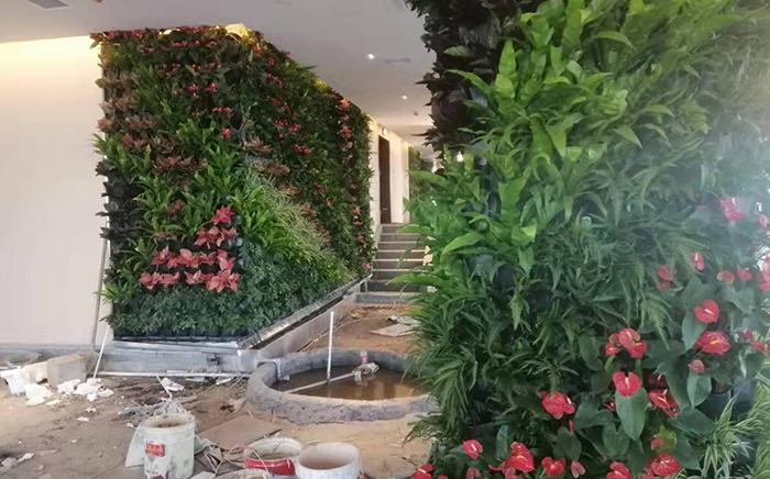室内植物墙设计