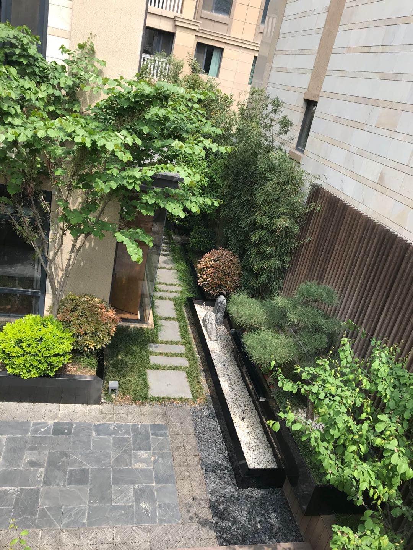庭院景观设计效果图