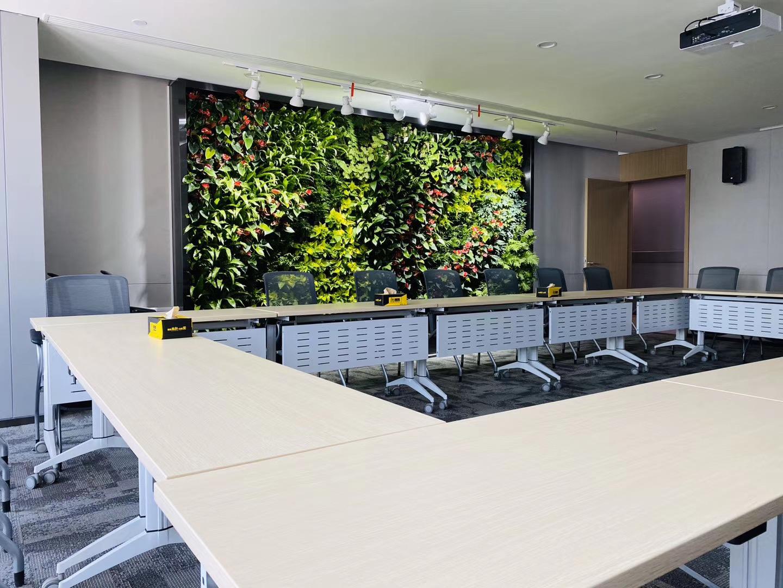 曲江办公室植物墙