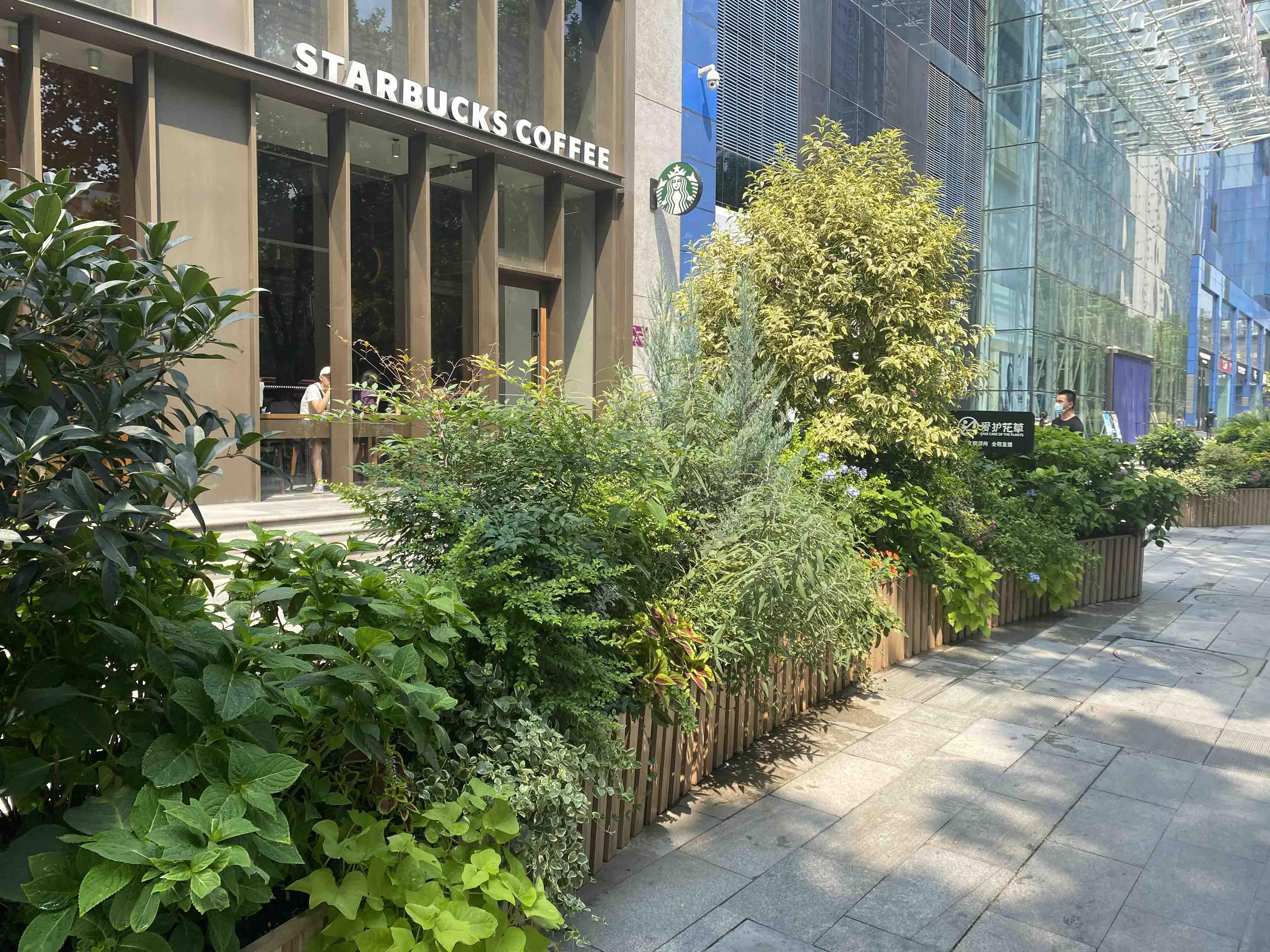 西安赛格广场绿植景观