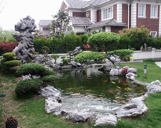 小型假山鱼池