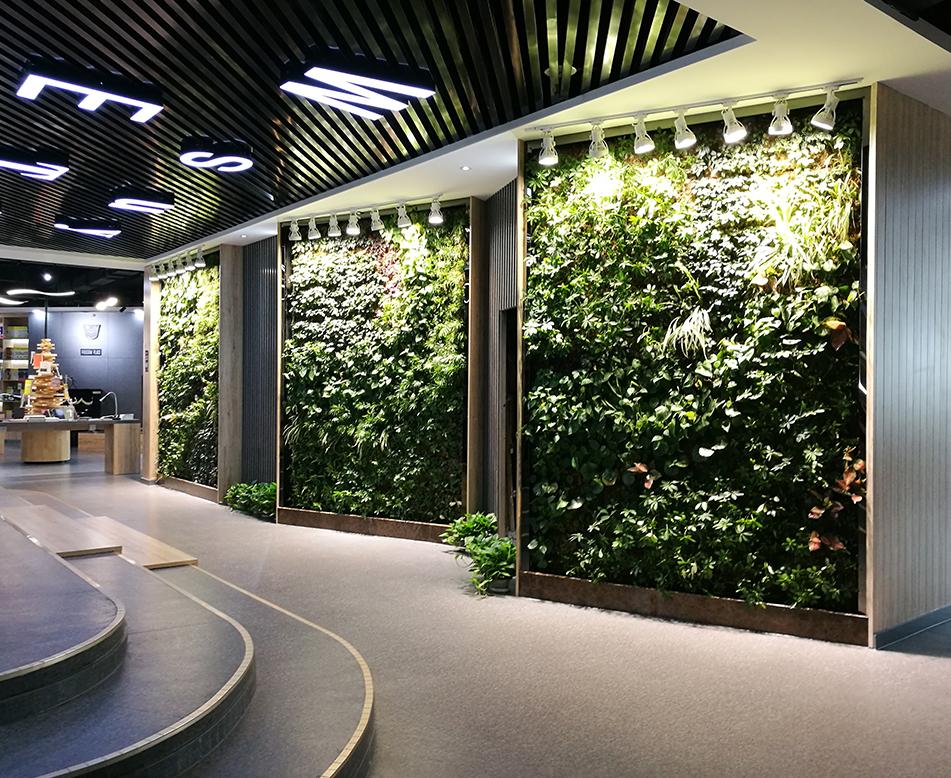 教育培训大厅植物墙