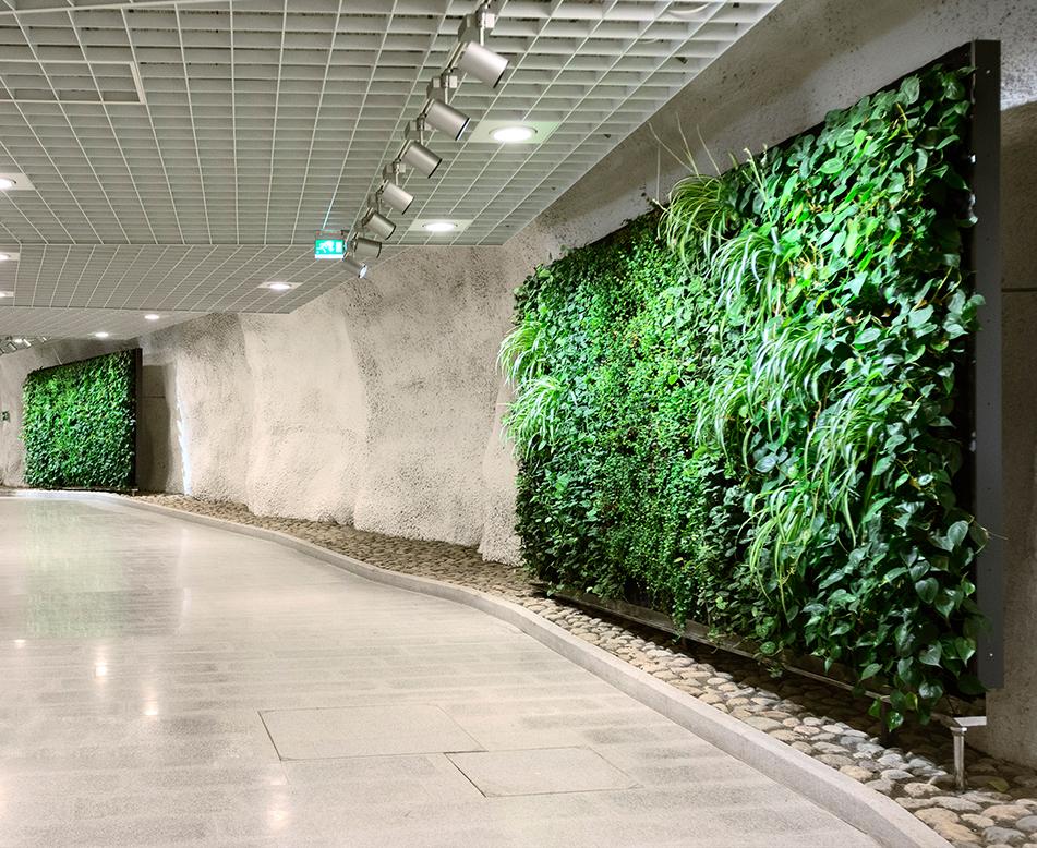 室内植物墙的设计有什么优势