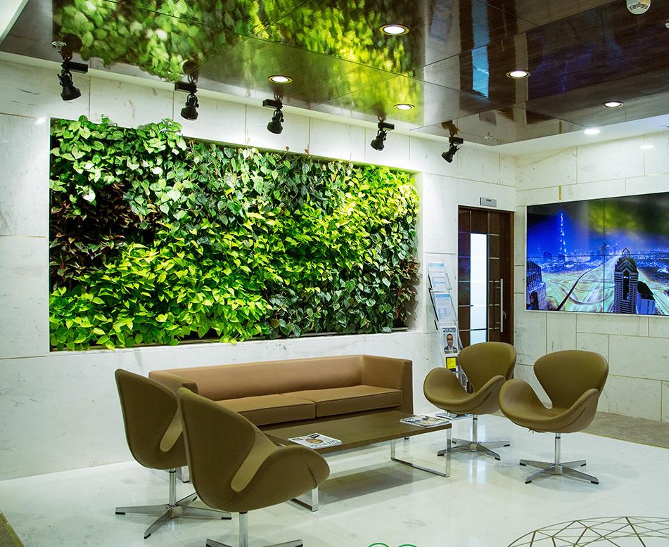 休息区植物墙