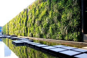 立体绿化在城市建筑景观设计中的应用
