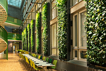 一面绝美室内立体植物墙的打造,应该是这样的