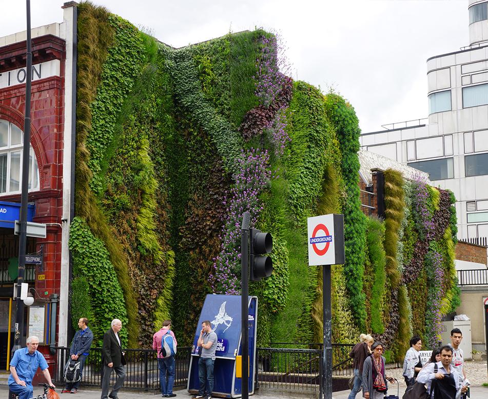 商业区户外立体绿化