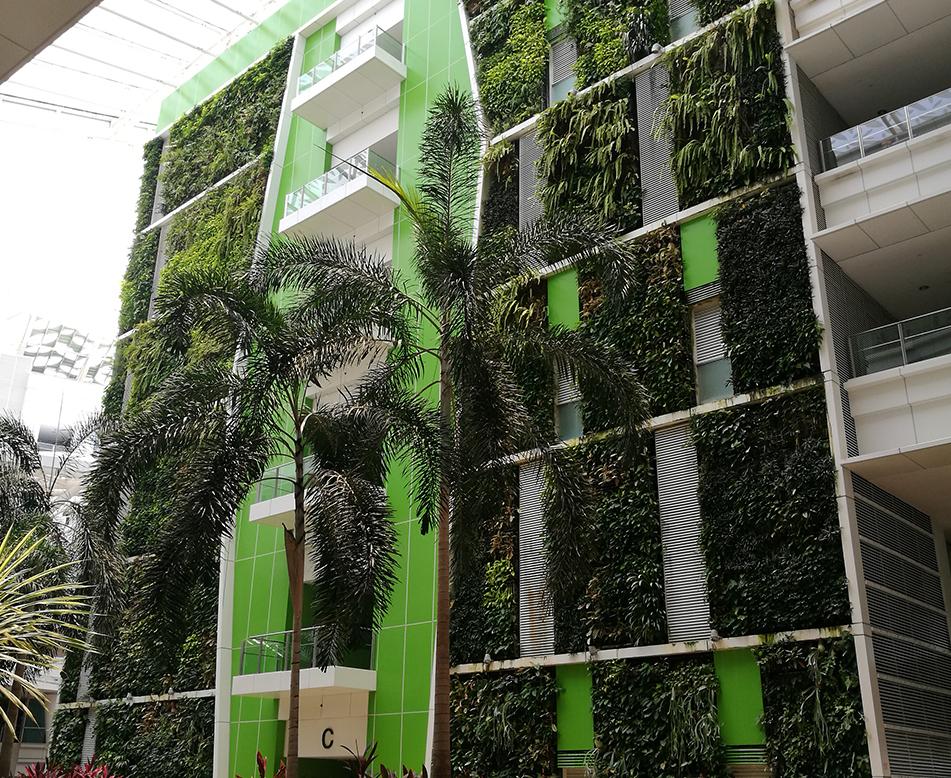 室外垂直绿化墙