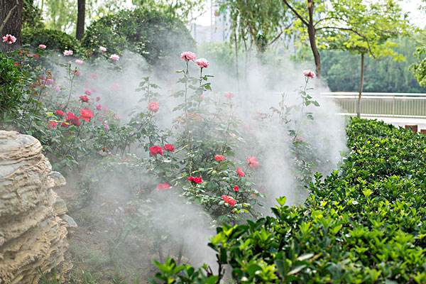 雾森系统日常维护怎么做?