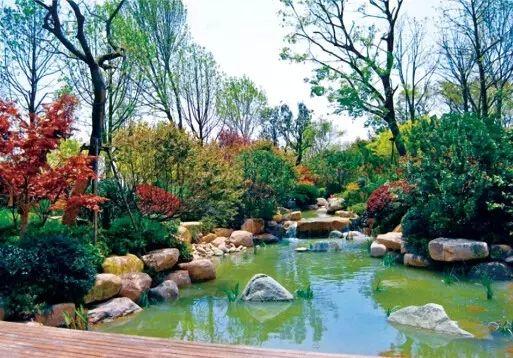 园林水景中的静水与流水