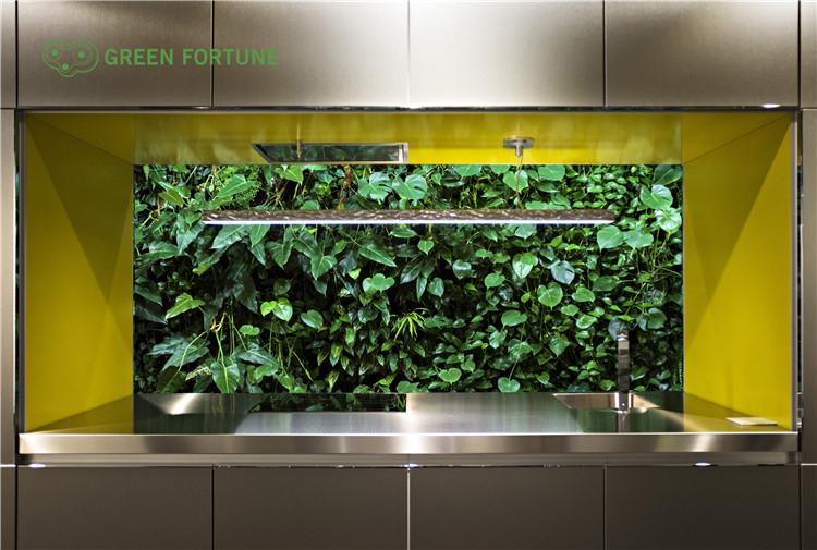 植物墙采用滴管系统有什么好处?