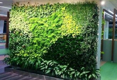注意,植物墙的安全要靠这些细节!