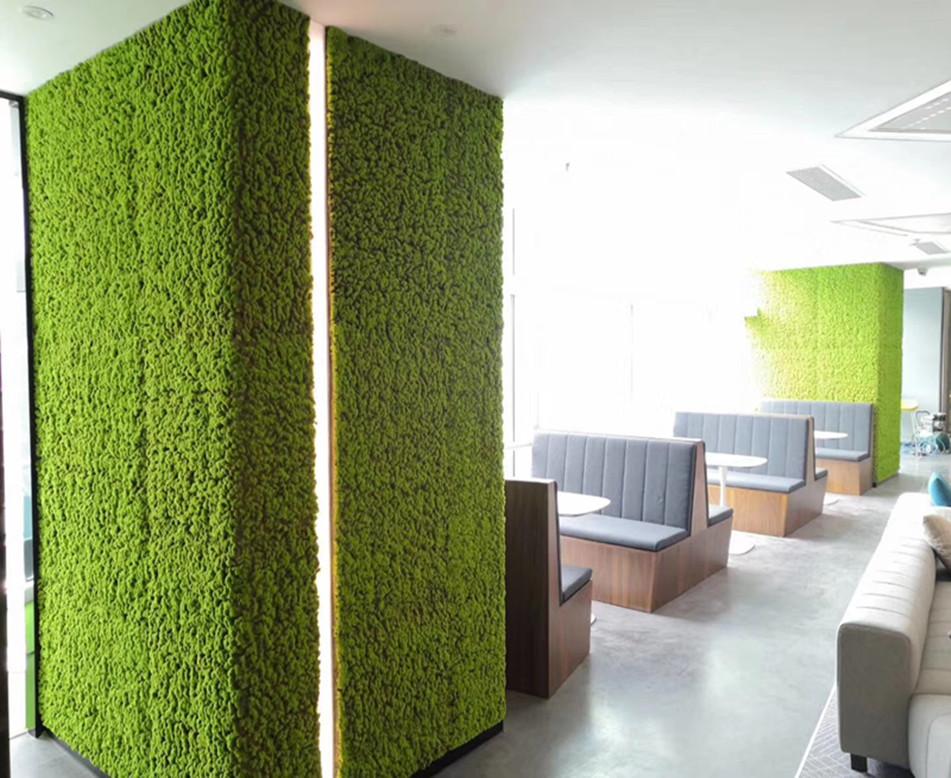 休息区苔藓植物墙