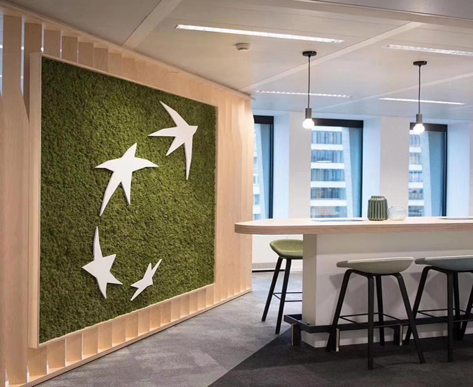 公司休息区苔藓植物墙